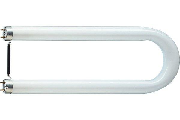 U-Form Leuchtstofflampe T8